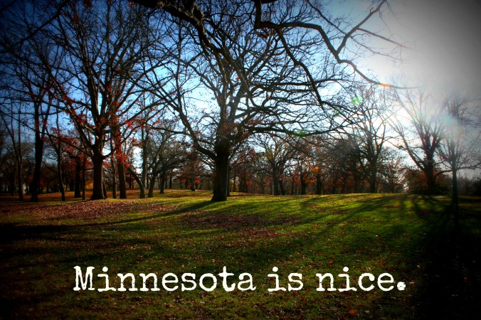 MinnesotaNice